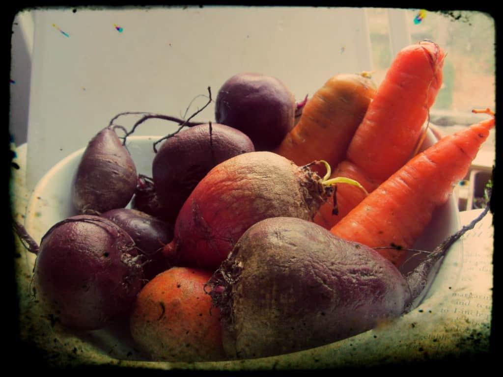 Beet borscht ingredients