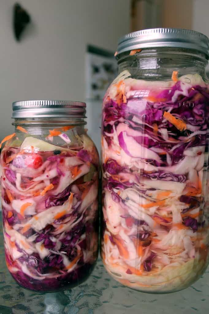 quick-pickled sauerkraut ready for fermentation