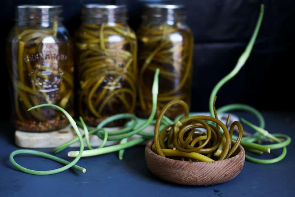 Mustard garlic scape pickles