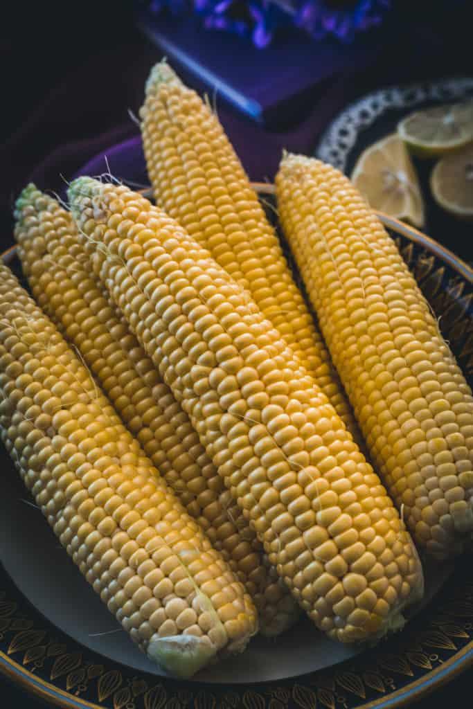 corn, close up