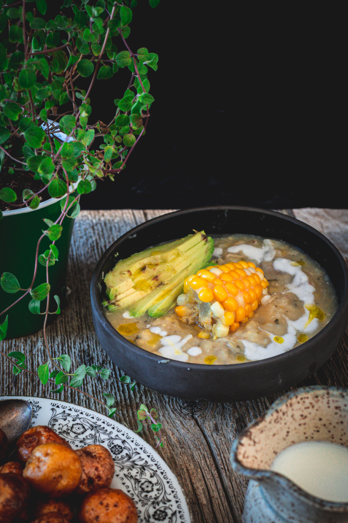 ajiaco bowl, oregano plant