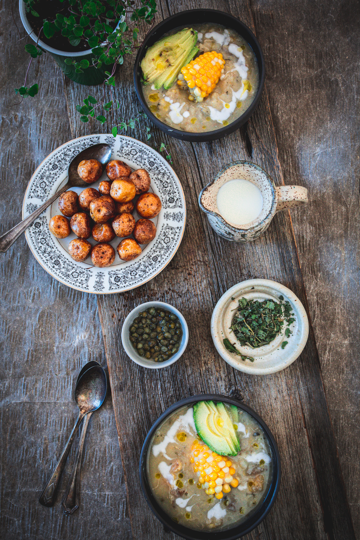 ajiaco bowl with cream, papas criollas and oregano plant